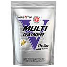 Гейнер Vansiton Multigainer (0,9 кг) Ванситон Мультигейнер, фото 2
