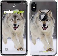 "Чехол на iPhone X Бегущий волк ""826c-1050-571"""