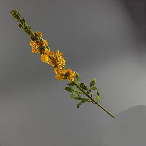 Искусственное травянистое растение львиный зев (желтый)., фото 2