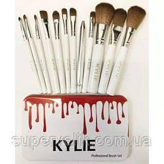 Профессиональный набор кистей для макияжа Kylie 12 шт.- метал белый