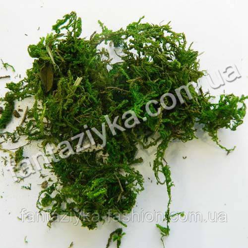 Натуральный сушеный мох зеленый 25г