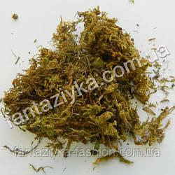 Натуральный сушеный мох коричневый 25г