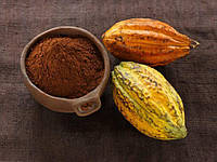 Какао-порошок алкализированный 10-12%