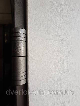 Входная дверь модель 1200 П3-365 vinorit-05, фото 2