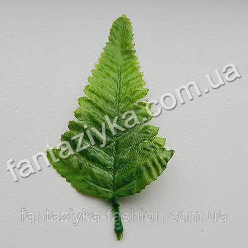 Одинарный лист папоротника маленький