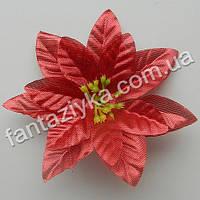 Рождественский цветок пуансетия 10см, красная парча