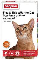 Ошейник против блох и клещей для котов Beaphar (Беафар) элегант оранжевый 35 см