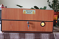 Інкубатор з вентилятором і автоматичним переворотом МАЛЮК
