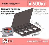 """Весы для приямка с откидной платформой 4BDU600-1010ВП-Бюджет """" Аксіс Україна"""""""