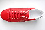 Кеды мужские красные Dolce Gabbana 41 42 43 44, фото 4