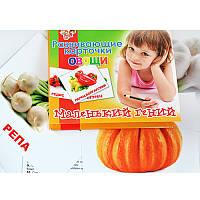 Набор детских карточек 'Овощи', 15 шт в наборе