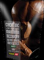 Креатин Power Pro Creatine 500 грамм