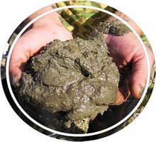 Микроудобрение из сапропеля (земляные дрожжи) от производителя с доставкой по Украине