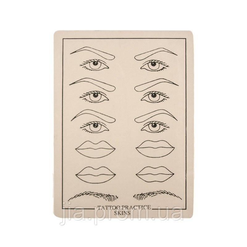 Комплект губ эскиза различных Иллюстрация вектора - иллюстрации ... | 800x800
