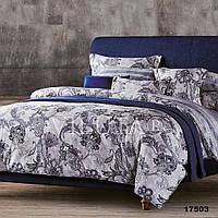 17503 Двуспальное постельное белье ранфорс Платинум Viluta