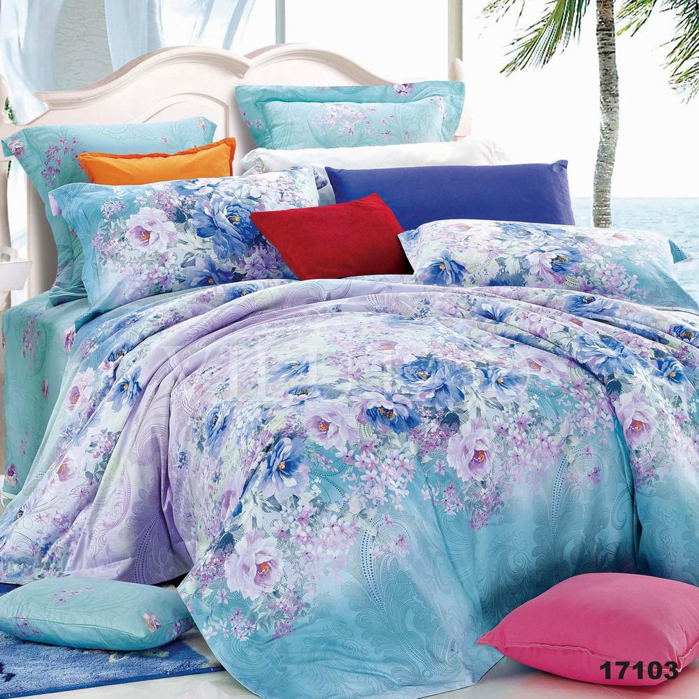 17103 Полуторное постельное белье ранфорс Viluta