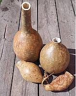 Лагенария натуральная для декора интерьера, 45