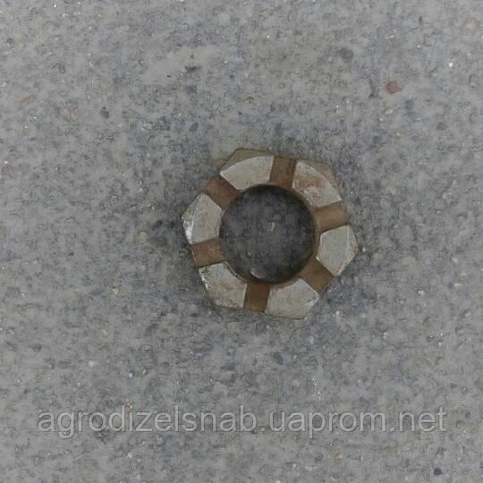 Гайка колено-оси ДТ-75 85.32.114