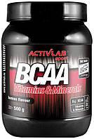 ActivLab BCAA Vitamins & Minerals 500 g активлаб бцаа витамины и минералы