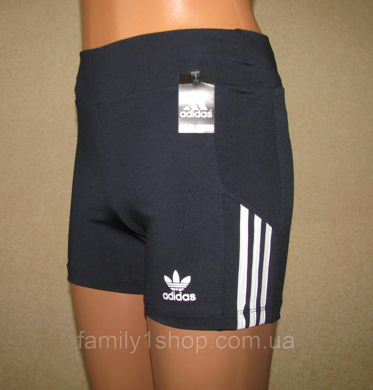 Спортивные шорты женские Адидас, эластик.  продажа, цена в ... 1e5579e6866