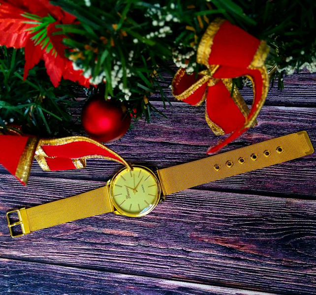 Женские часы Geneva Steel