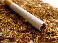 Насіння Тютюну курильного пакетовані