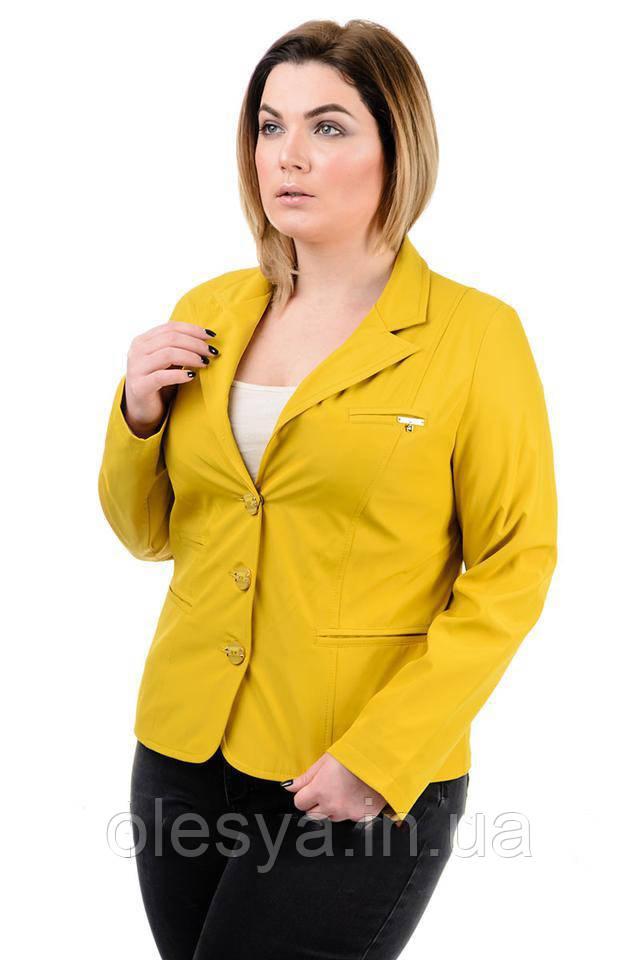 Пиджак женский длинный рукав большие размеры 50- 58