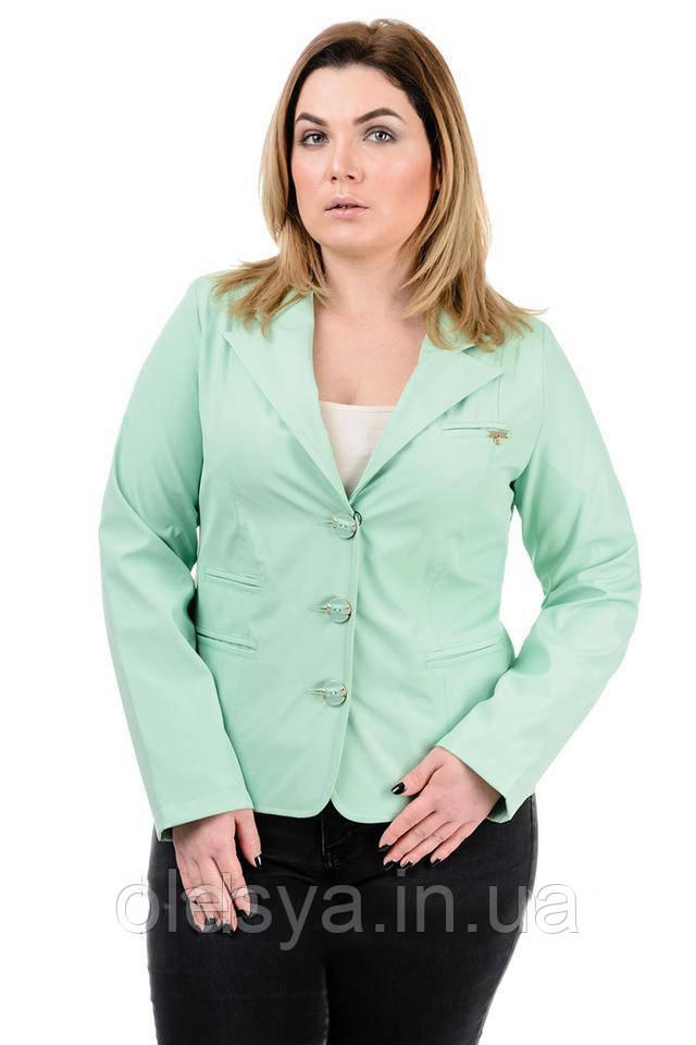 Пиджак женский длинный рукав большие размеры 50- 60