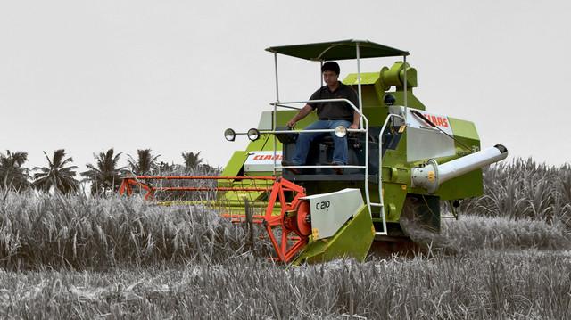 Фото мини комбайна зерноуборочного