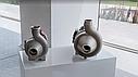 Насос для продуктов с крупными включениями RV-100 (4,0кВт), фото 5