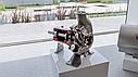 Мезгонасос Inoxpa RV-80 (2,2кВт), фото 4