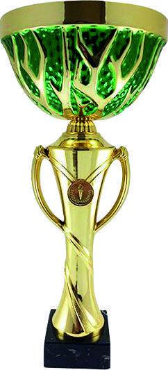 Кубок нагородної K4500