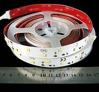 Светодиодная лента 2835-48-IP33-WW-16-24