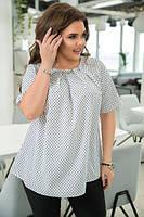 Блузка біла в горошок, з 48-54 розмір, фото 1