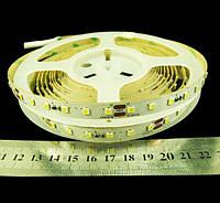 Светодиодная лента 2835-84-IP33-NW-10-24