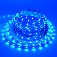 Светодиодная лента LED 12V, SMD5050, 60 д/м, синий, фото 1