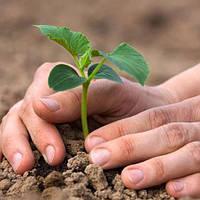 Для растениеводства