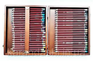 Набор пастельных карандашей Derwent Pastel Pencils 48 цв. в деревянной коробке, фото 2