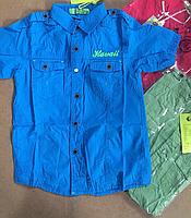 Рубашки для мальчиков оптом, S&D, 134-164 рр., арт. KK-237, фото 2