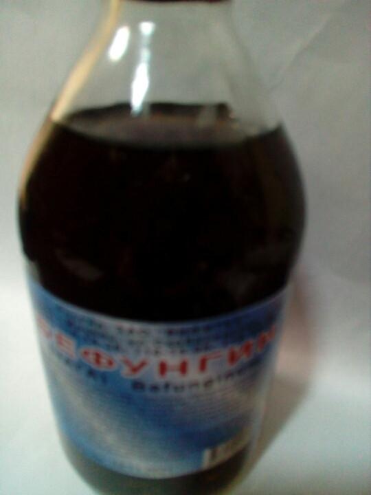 Чага гриб, Бефунгин настойка  - экстракт чаги (250мл.,Россия)