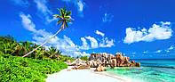 """Фотообои бумажные """"Пляж, пальмы"""""""