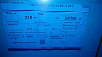Картон упаковочный Chenming Poplar Plus GС2 215 70х100