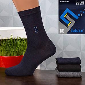 Мужские носки Jujube F503-1. В упаковке 12 пар