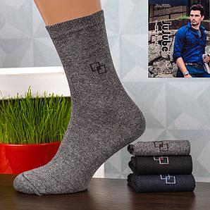 Мужские носки Jujube F503-11. В упаковке 12 пар