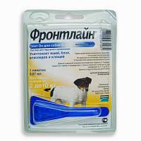 FRONTLINE Spot-On S - капли на холку от блох, клещей и насекомых для собак 2-10кг (0,67мл)