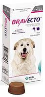 Бравекто Жевательная таблетка для защиты от блох и клещей для собак весом 40-56 кг