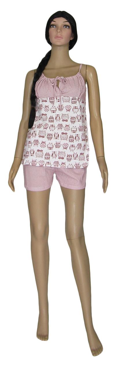 Пижама женская летняя 03238 Topi Pink Owl, майка и шорты, хлопок, р.р.42-50