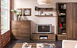 Тумба ТВ у вітальню з ДСП RTV 120 Опен Gerbor, фото 3