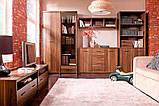 Тумба ТВ у вітальню з ДСП RTV 120 Опен Gerbor, фото 4
