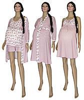 Комплект 02117 Pink Owl для беременных и кормящих 3 предмета +1 (подарок), р.р.42-50